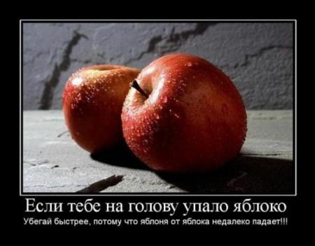 демотиватор - яблоко